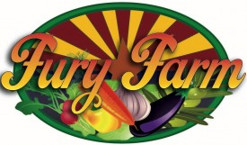 FURY FARM LOGO